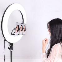кольцевая лампа светодиодная  54 см ZHQ-1