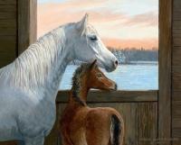 лошадь и жеребенок Картина 40х50