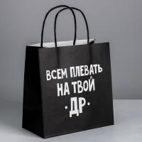 Пакет подарочный «Всем плевать на твой др», 22 × 22 × 11 см
