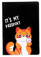 Обложка на паспорт ПВХ « Это мой паспорт»