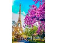 Романтичный париж Картина 40х50