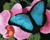 Тропическая бабочка Картина 40х50