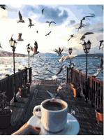 Утро на причале.Чайки GX 23269 Картина 40х50
