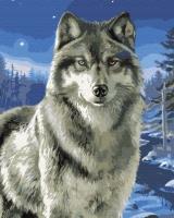 Волк в заполярье Картина 40х50