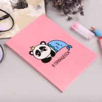 """Обложка на паспорт """"Панда-принцесса"""": размер 13,5 х 9,2 х 0,2 см"""