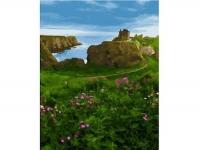 Замок Данноттар Шотландия Картина 40х50